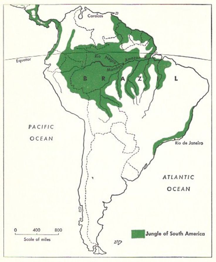 Amazon River Map Watershed