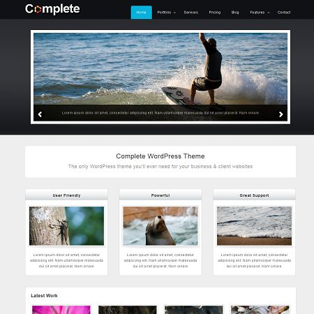 Complete Free Business & Portofolio Wordpress Theme