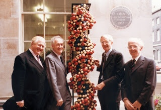 Fortieth Anniversary at King's College London of the discovery of the structure of DNA in 1993. Pictured are four of the five names commemorated in  the grey plaque on the background wall ( from left-right they are: Raymond Gosling, Herbert Wilson, Maurice Wilkins and Alexander Stokes). Professor Herbert R Wilson was a native of Nefyn.