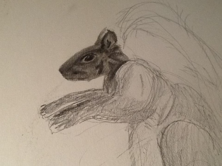 preliminary sketch from a drawing course I took awhile back