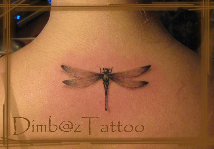 Dragonfly Tattoos                                                       …