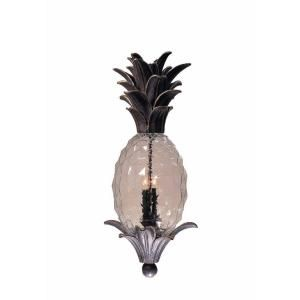 Illumine 2 Light Outdoor English Bronze Pendant With Clear Pineapple Glass  CLI TR7510711 At