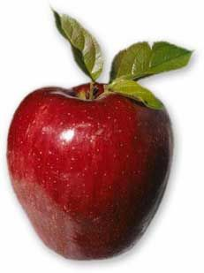 Profumo: mela rossa #bouquet #red #apple #redapple #profumo #mela #rossa