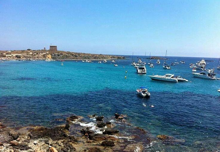 41 best isla de tabarca alicante images on pinterest - Alojamiento en isla de tabarca ...