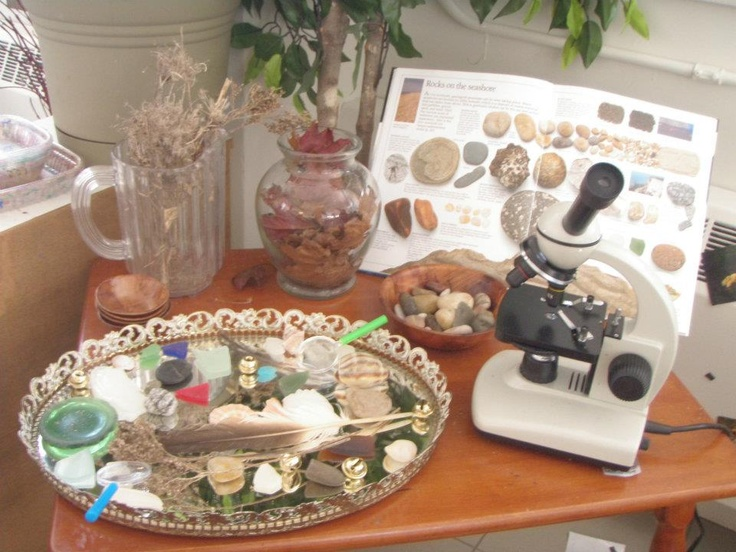 Microscope with a book about rocks Rocks, feathers and other nature items on a glass platter to exam.
