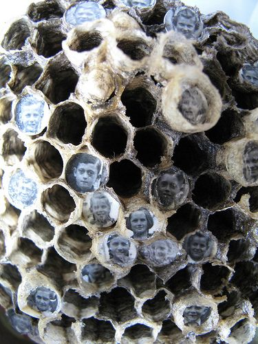 Wasp Nest Children Reliquary Box (detail), 2012, by Lisa Wood