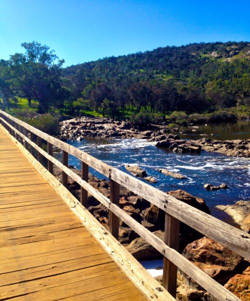 Bells Rapids Trail and Houghton Wines