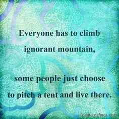 Really good quote: Everyone has to climb ignorant mountain, some people just choose to pitch a tent and live there. Sounds something like Todd Chrisley would say.
