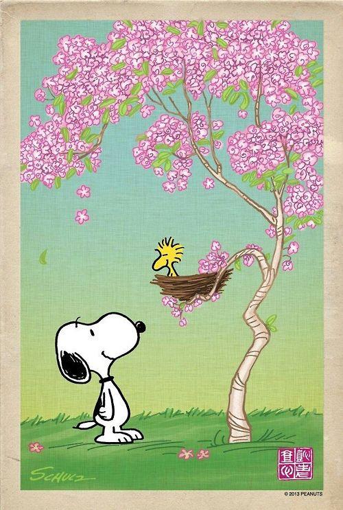 Snoopy na árvore                                                                                                                                                                                 Mais