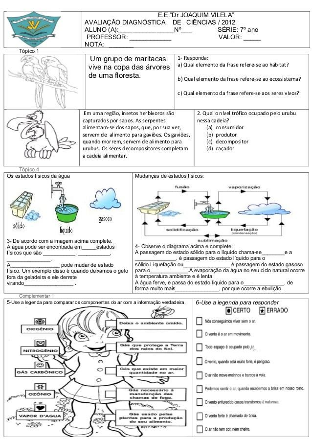 avaliacao-de-ciencias-para-1-ano-prova-facil.jpg (638×903)