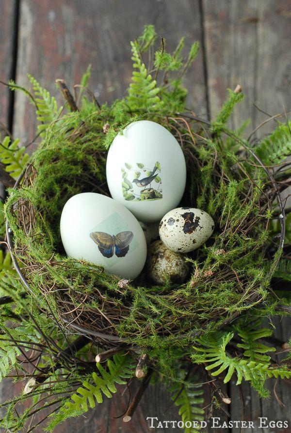 Tattooed Easter Eggs in Nest {tutorial} - BoulderLocavore.com #easter #diy