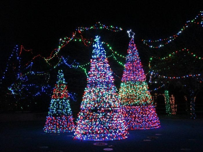 3 Zoolight Safari At Birmingham Zoo In 2020 Christmas Light Displays Best Christmas Light Displays Alabama Christmas