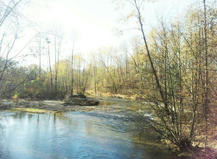 coquitlam rivers