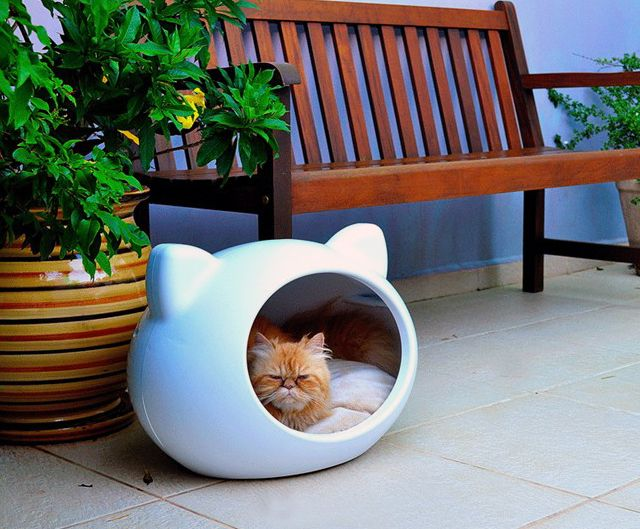 Fancy - Cat Cave House: Cat Beds, Cats, Stuff, Pet, Caves House, Cat Houses, Cat Caves, Kitty, Animal
