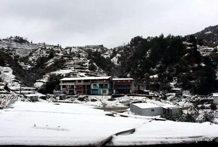 कालिञ्चोकमा फागुन सकिन लाग्दा हिमपात, २४ फोटोमा हेर्नुस् जताततै हिउँ | Mysansar