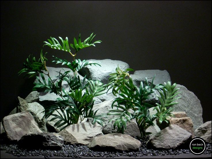 silk aquarium plants or reptile plants: broken leaf (sarp161) from ron beck designs. by ronbeckdesigns on Etsy