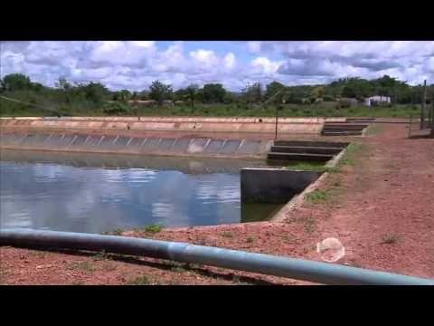 Conheça a piscicultura em tanques escavados em terra firme em Piracuruca - YouTube