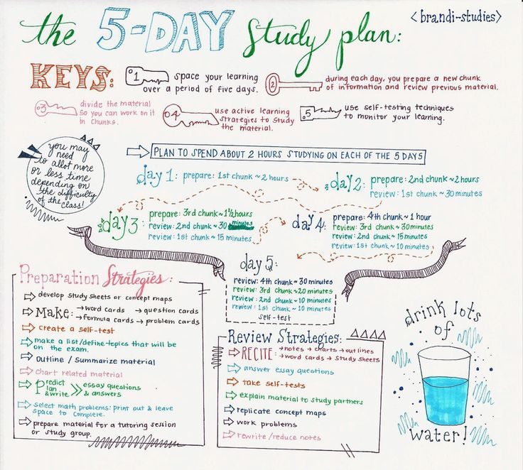 brandi-studies:  The Five Day Study Plan:  Exam season is upon us (actually, exam season has been this entire semester for me, really. I've had at least one exam every week since January) so I decided to make a little info graphic on the 5-day study plan.  I hope this is helpful! :)