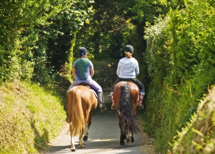 Horse riding in a country lane, Guernsey