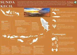 Infografik sunda kecil_304