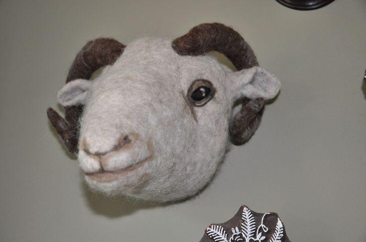 Een persoonlijke favoriet uit mijn Etsy shop https://www.etsy.com/nl/listing/286189225/sheephead-needlefelted-faux-taxidermy