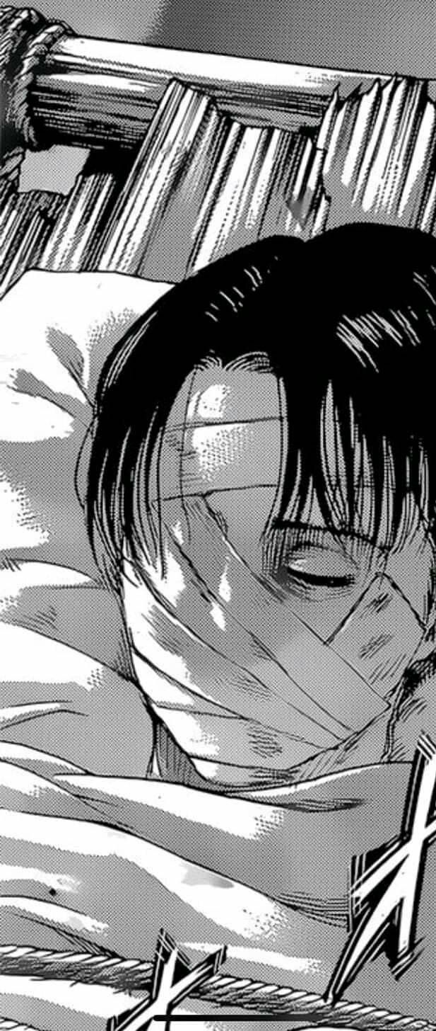Pin By Beberexhaf On Attack On Titan In 2020 Attack On Titan Levi Attack On Titan Anime Captain Levi