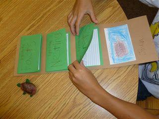 4th Grade Frolics: Sea Turtle Stuff/Project/Research/Fun