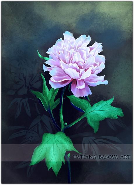 """Peony Art. Flowers spring from the ground. But their imperishable beauty comes from an upper world. One who saw beautiful flowers hidden in the leaves finds hidden love.  Bushi-do is the Way for few,  The way for the strong and the brave!  A. R. Basov, """"Spirit of the Warrior"""""""