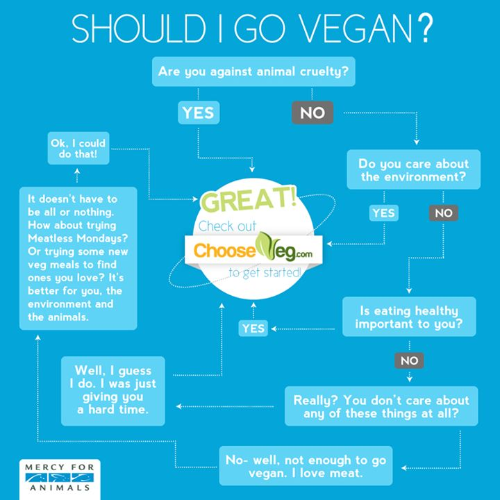 I have to write a persassive essay. and i choose why people should try to go vegetarian..?