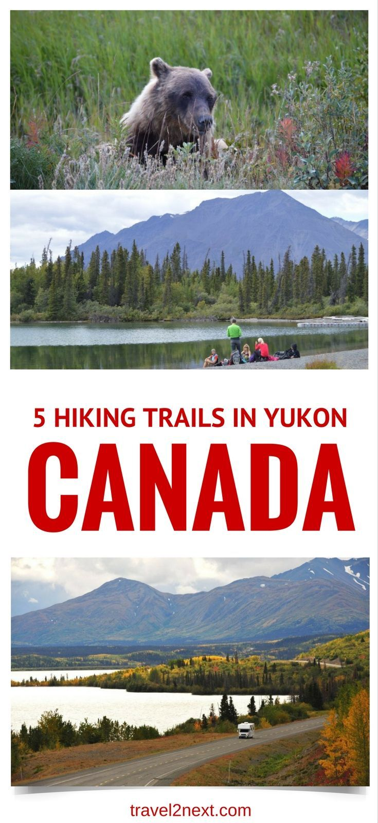 5 best Hiking Trails in Yukon, Canada. Canadians call it 'bear-a-noia'. Fear of walking with bears. I've never heard of it.