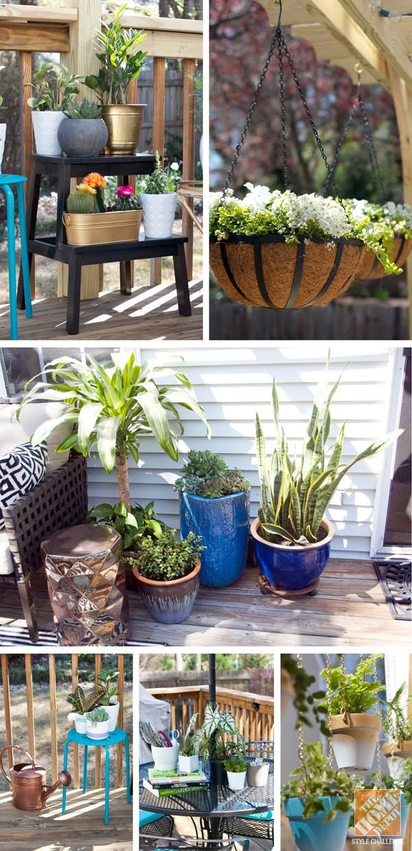 No Patio Is Complete Without Lots Of Potted Plants
