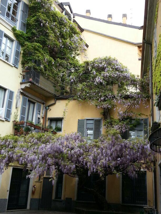 Courtyards in Milan