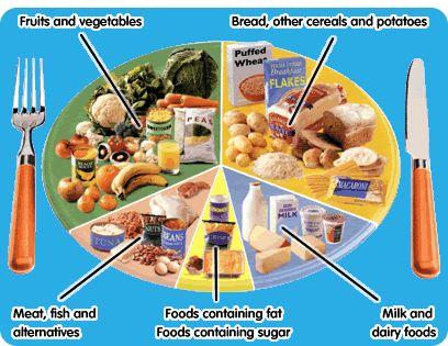 nutrition menu