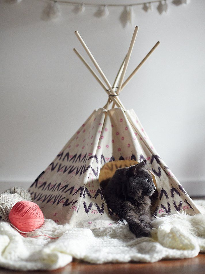 """Printed Cat Tipi 