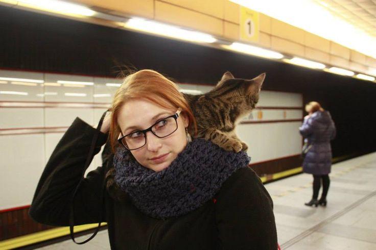 On the metro station Palmovka