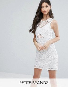 Miss Selfridge Petite Mesh and Lace Pencil Dress
