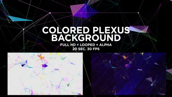 Colored Plexus Background by sonderson Colored Plexus Background ¨C Full HD(1920x1080), 30fps 100 seamlessly loop-able duration 20 sec Quicktime Photo Jpeg format / Quicktime png Alpha Seamless motion graphics