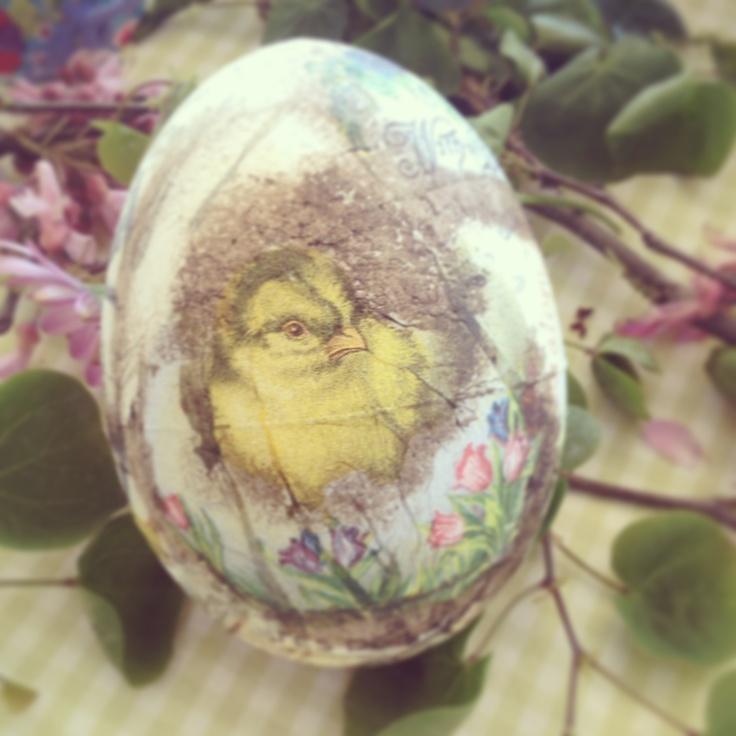 Το αυγό έκανε την κότα η κότα το αυγο;;