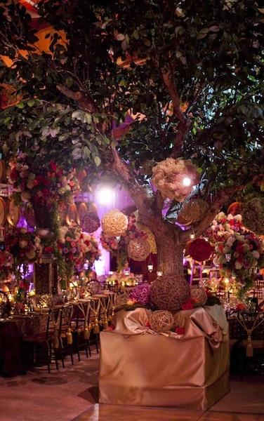 David Tutera HAS to be my wedding designer. This Napa themed wedding is truly a dream.