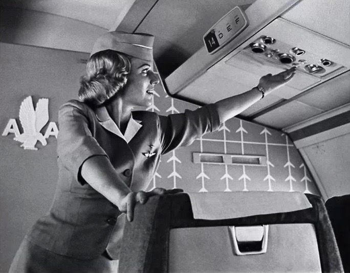 American Airlines Flight Attendant