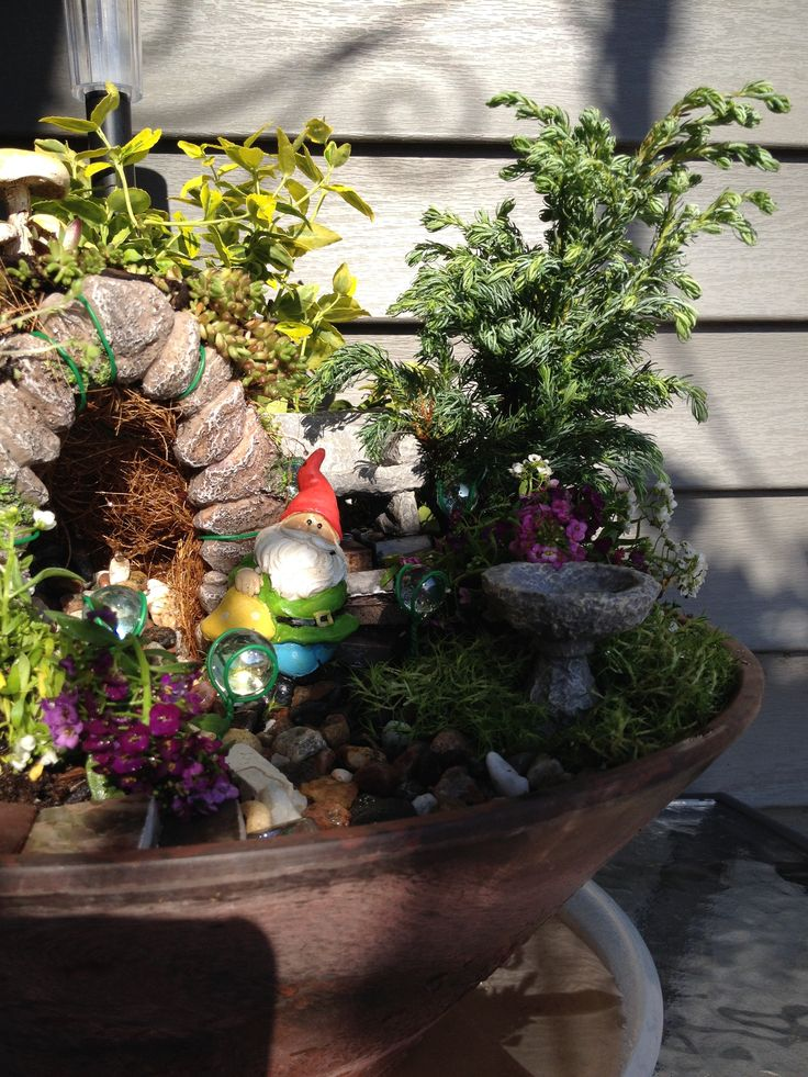 Gnome of Ensley Hill -- caught in a sunbeam