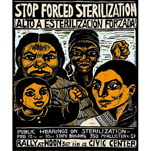 """San Francisco Poster Brigade; artwork by Rachel Romero - """"Stop Forced Sterilization"""" poster, 1977, advertising a public hearing rally - In 1909, California became the third state to pass a compulsory sterilization bill. The state performed more than 20,000 sterilizations until the law was repealed in 1979"""