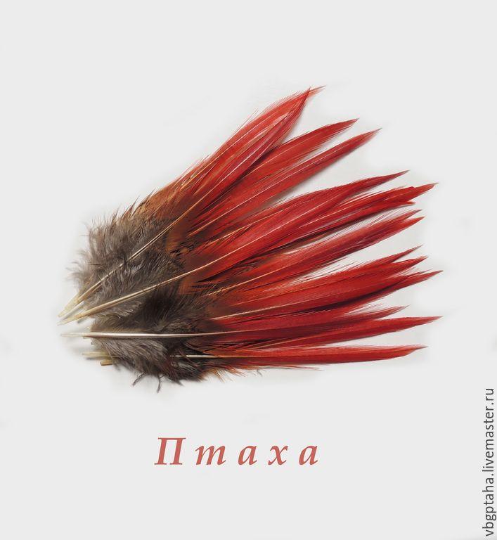 Купить Перья фазана красные - ярко-красный, перья, Перья натуральные, перья птиц