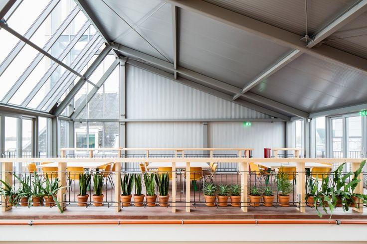 spring house inspirerende kantoorruimtes sprout