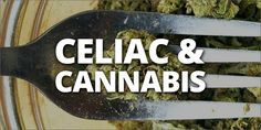 As the number of people suffering from Celiac Disease rises, many are turning to medical marijuana as a means of relief from pain and digestive issues.