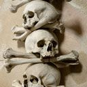 Free Tour in Prague with Sandemans! Kutná Hora and the Bone Chapel - Prague Tours