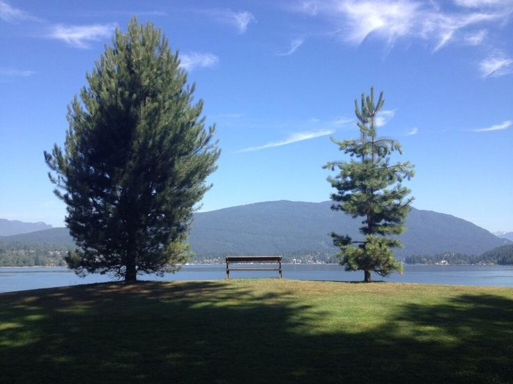 Barnet Marine Park in Burnaby. Pic provided via Twitter /IanAMartin.