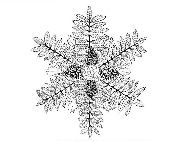 Holly, pine and rowan by Sunao17 on DeviantArt