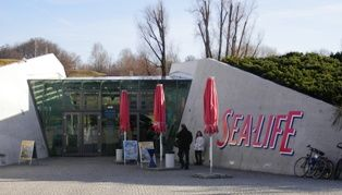 Sea life aquarium in the Olympic park- really wanted to go here when I was in Munich.