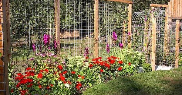 Garden trellis panels which become a fence... This is a dream fence for anyone in deer country. Very slick and very worth sharing. Tina Reaume… | Pinterest | G…